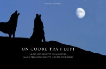 Un cuore tra i lupi è disponibile in e-book
