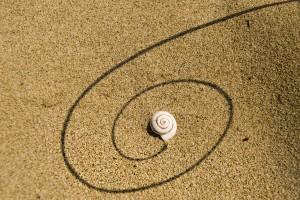 Mare 1 Piccole tracce sulla sabbia. Luce radente, un ombra, il guscio di una lumaca