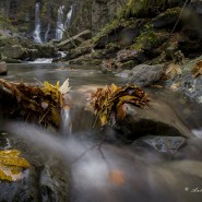 Autunno alle cascate del Dardagna