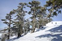 Escursione primaverile a Serra crispo
