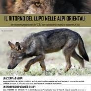Nel mondo dei lupi – Camposampiero Padova