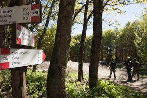 Partenza - Direzione Sant'Alberico