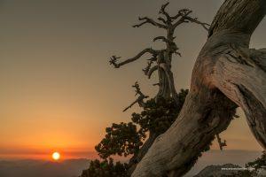 Pollino tramonto da serra delle ciavole