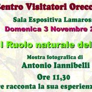 Mostra fotografica Orecchiella
