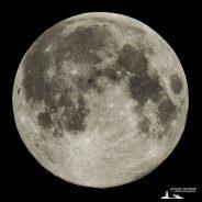 La super luna Covid-19